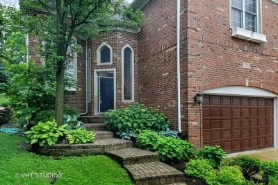 Glen Ellyn Single Family Home For Sale: 707 Elm Street