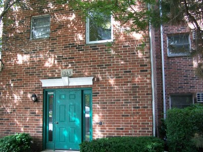 Lake In The Hills Condo/Townhouse For Sale: 1343 Cunat Court #1C
