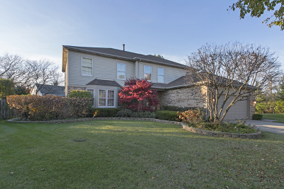 Buffalo Grove Single Family Home For Sale: 79 Fabish Court
