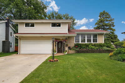 Mount Prospect Single Family Home For Sale: 1303 East Ironwood Drive