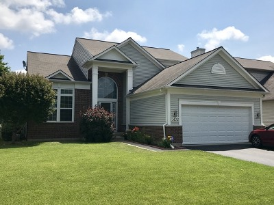 Carpentersville Single Family Home For Sale: 3102 Erika Lane