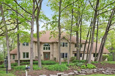 Homer Glen Single Family Home For Sale: 12406 West Mackinac Road