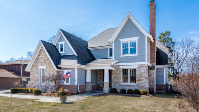 Hinsdale Single Family Home For Sale: 5522 South Stough Street