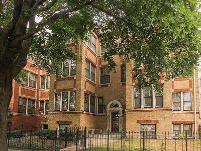 Oak Park Condo/Townhouse For Sale: 428 South Maple Avenue #1N