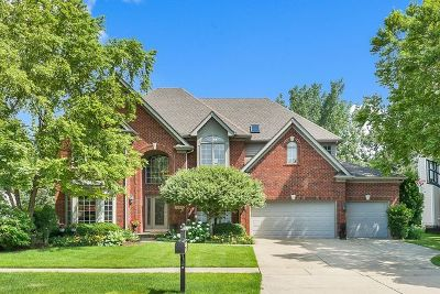 Naperville IL Single Family Home For Sale: $715,000