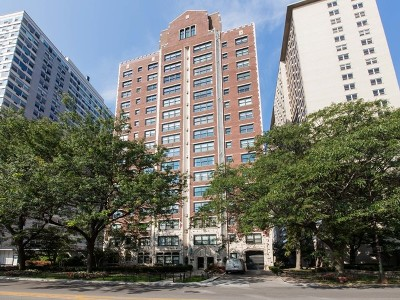 Condo/Townhouse For Sale: 3920 North Lake Shore Drive #3N
