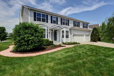 Oswego Single Family Home For Sale: 555 Litchfield Way
