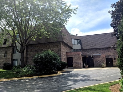 Westmont Condo/Townhouse For Sale: 907 South Williams Street #202