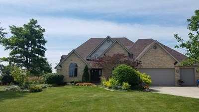 Frankfort Single Family Home For Sale: 8905 West Stuenkel Road