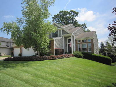 Antioch Single Family Home For Sale: 659 Briarwood Court