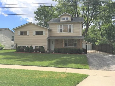 Glendale Heights Single Family Home For Sale: 1373 Glen Ellyn Road