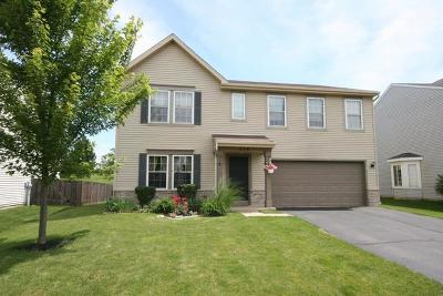Pingree Grove Single Family Home For Sale: 276 Brookhaven Trail