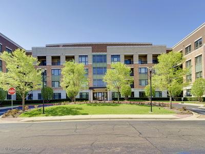Burr Ridge Condo/Townhouse For Sale: 1000 Village Center Drive #406