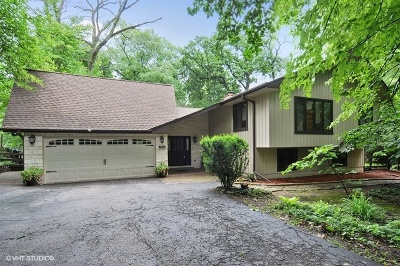 Naperville Single Family Home For Sale: 2324 Lisson Road