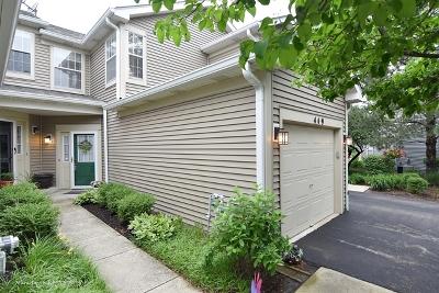 Batavia Condo/Townhouse For Sale: 449 Mill Street #449