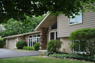 Palatine Single Family Home For Sale: 309 Elmwood Court
