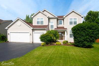 Algonquin Single Family Home For Sale: 300 Tenby Way