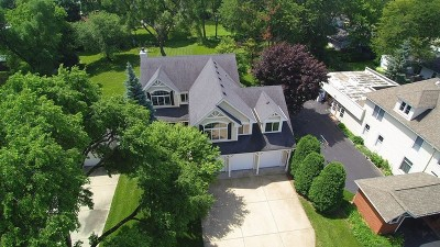 Arlington Heights Single Family Home For Sale: 1007 West Palatine Frontage Road