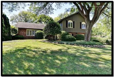 Burr Ridge Single Family Home For Sale: 8206 Kathryn Court