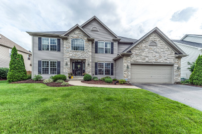 South Elgin Single Family Home For Sale: 965 Wyndham Drive