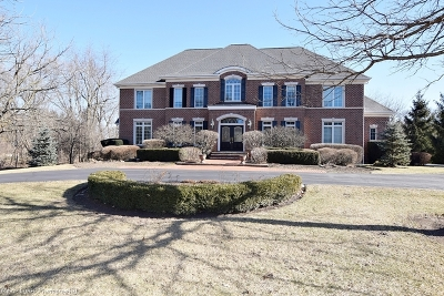 St. Charles Single Family Home For Sale: 6n855 Hastings Drive