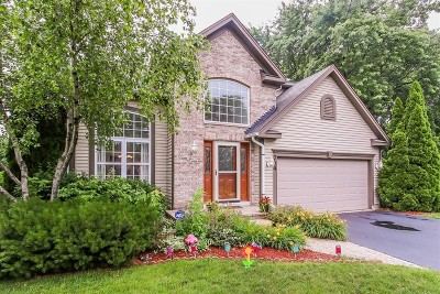 Palatine Single Family Home For Sale: 704 West Easton Court