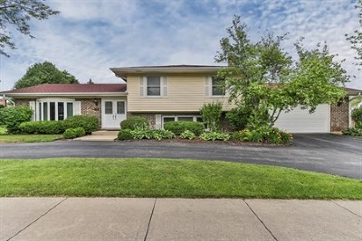 Schaumburg Single Family Home Re-Activated: 746 Summit Drive