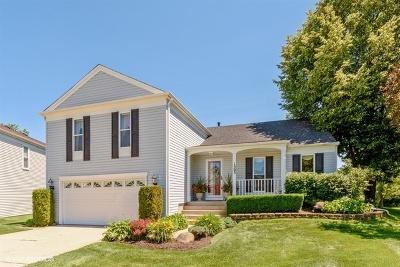 Buffalo Grove Single Family Home For Sale: 1303 Gail Drive