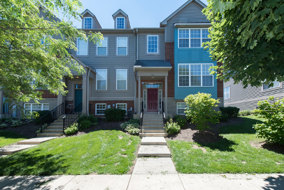Grayslake Condo/Townhouse For Sale: 251 Station Park Circle