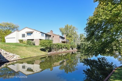 Oak Brook Condo/Townhouse For Sale: 93 Briarwood Circle
