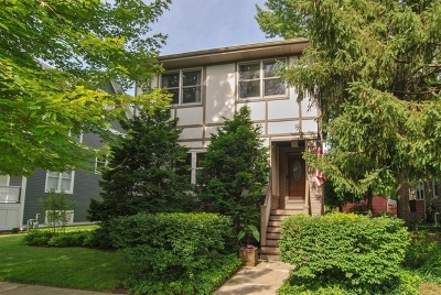 Oak Park Single Family Home For Sale: 1167 South Grove Avenue