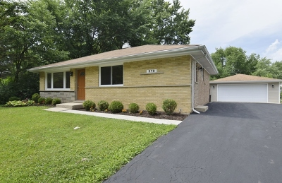 Palatine Single Family Home For Sale: 978 East Lilac Drive