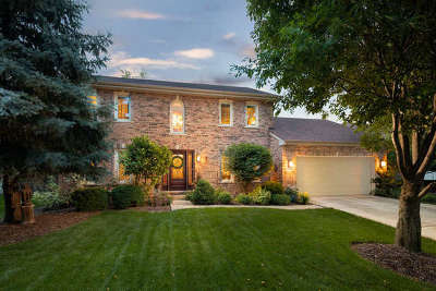 High Meadow Single Family Home For Sale: 5052 Switch Grass Lane