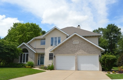 Minooka, Channahon Single Family Home For Sale: 22838 South Michael Drive
