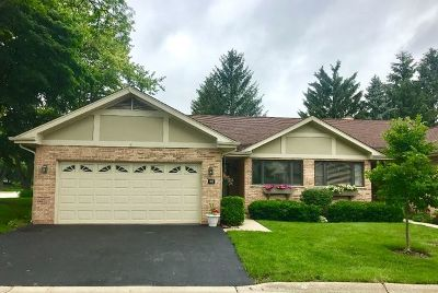 Bloomingdale Condo/Townhouse For Sale: 132 Villa Way
