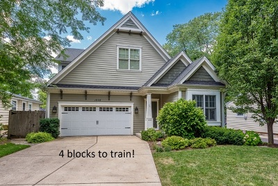Wheaton Single Family Home For Sale: 1028 Cherry Street