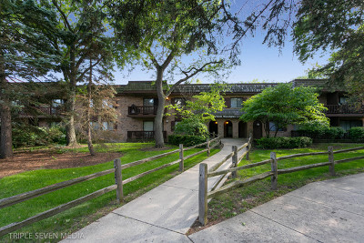 Downers Grove Condo/Townhouse For Sale