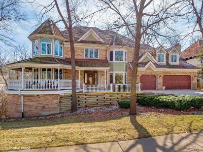 Burr Ridge Single Family Home For Sale: 140 Circle Ridge Drive