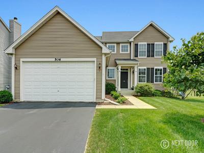 Oswego Single Family Home For Sale: 506 Leesburg Street