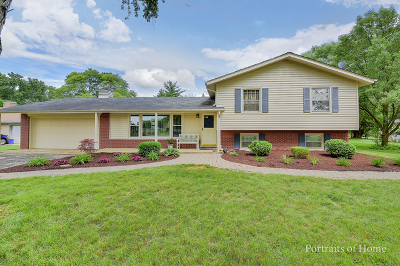 Naperville Country Estates Single Family Home For Sale: 4s683 Old Naperville Road