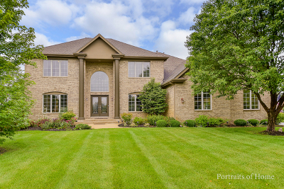 Naperville Single Family Home For Sale: 24410 Woodhall Court