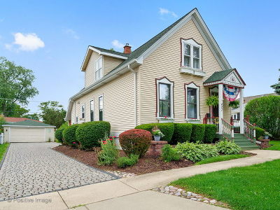Downers Grove Single Family Home For Sale: 427 Gierz Street