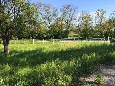 Lemont Residential Lots & Land For Sale: 13389 McCarthy Road