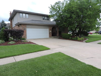 Tinley Park Single Family Home For Sale: 9349 178th Street