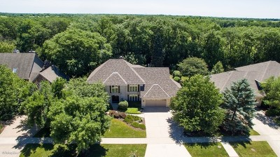Naperville Single Family Home For Sale: 812 Burgess Hill Road
