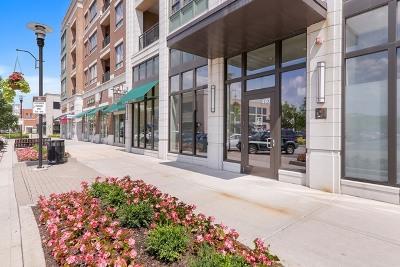 Burr Ridge Condo/Townhouse For Sale: 450 Village Center Drive #312