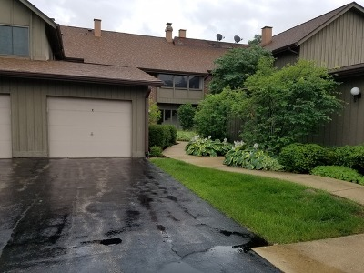 Warrenville Condo/Townhouse For Sale: 2s621 Enrico Fermi Court #A