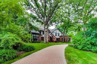 Burr Ridge Single Family Home For Sale: 9s175 Drew Avenue