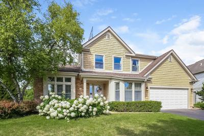 Buffalo Grove Single Family Home For Sale: 66 Copperwood Drive