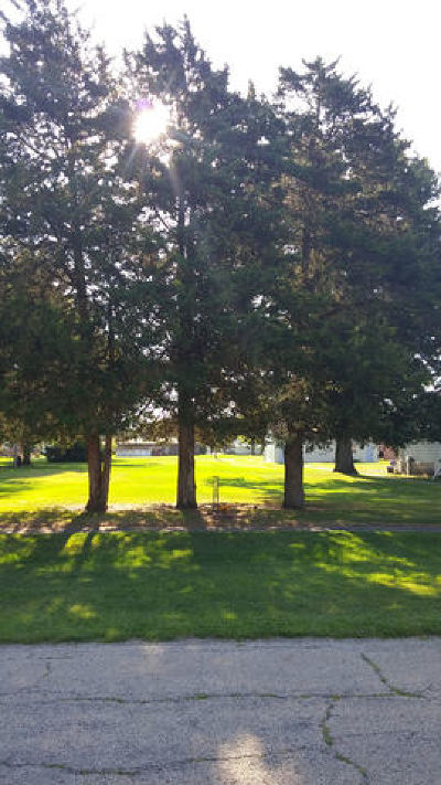 Coal City Residential Lots & Land For Sale: South Dewitt Place